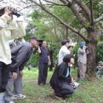 参加者らはアカショウビン、キンバトの美しい姿に見入っていた=9日、平良の大野山林