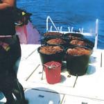 ダイビング業者らによって駆除されたオニヒトデ(資料写真)